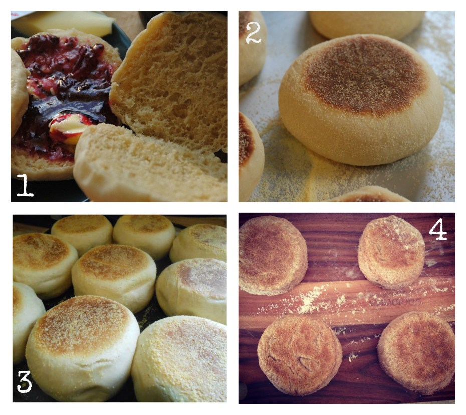 muffins Collage