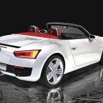 Volkswagen Blue Spot Roadster a