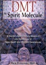 book DMT spirit molecule