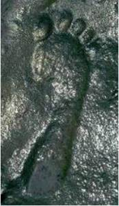 ancient-footprint255b1255d1