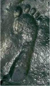 ancient-footprint255b1255d1