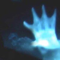 ¿Sirena capturada por la cámara acuática de un barco? 'Nueva evidencia' - 29 de mayo 2013
