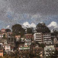 Plaga de langostas en Madagascar oscureció los cielos