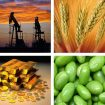 NAFTA: The Major Imports & Exports Between the U.S. & Canada Are Surprising