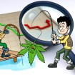 Cannabis Central: Ignore the Hype, Ignore the Lies!
