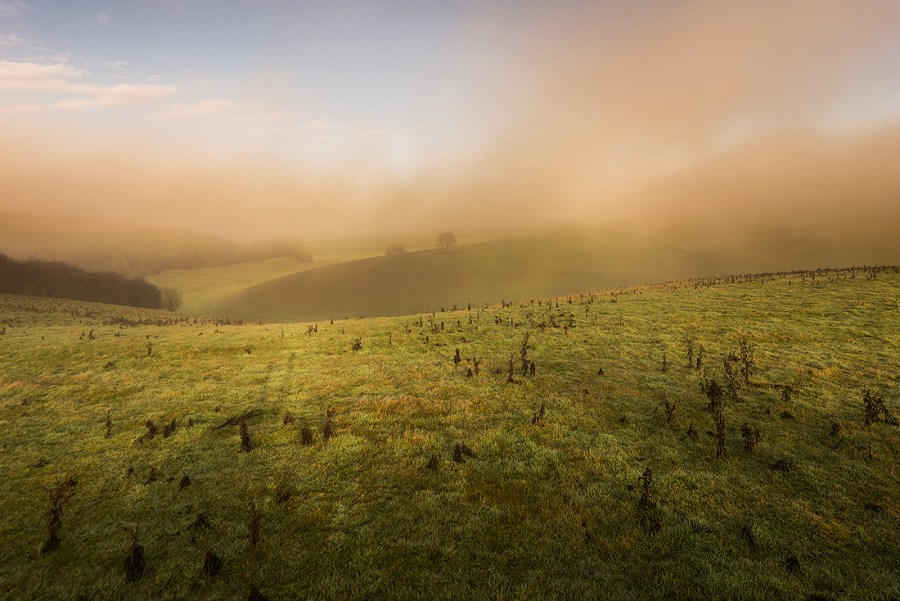 Winch-Hill-Fog-v2.jpg