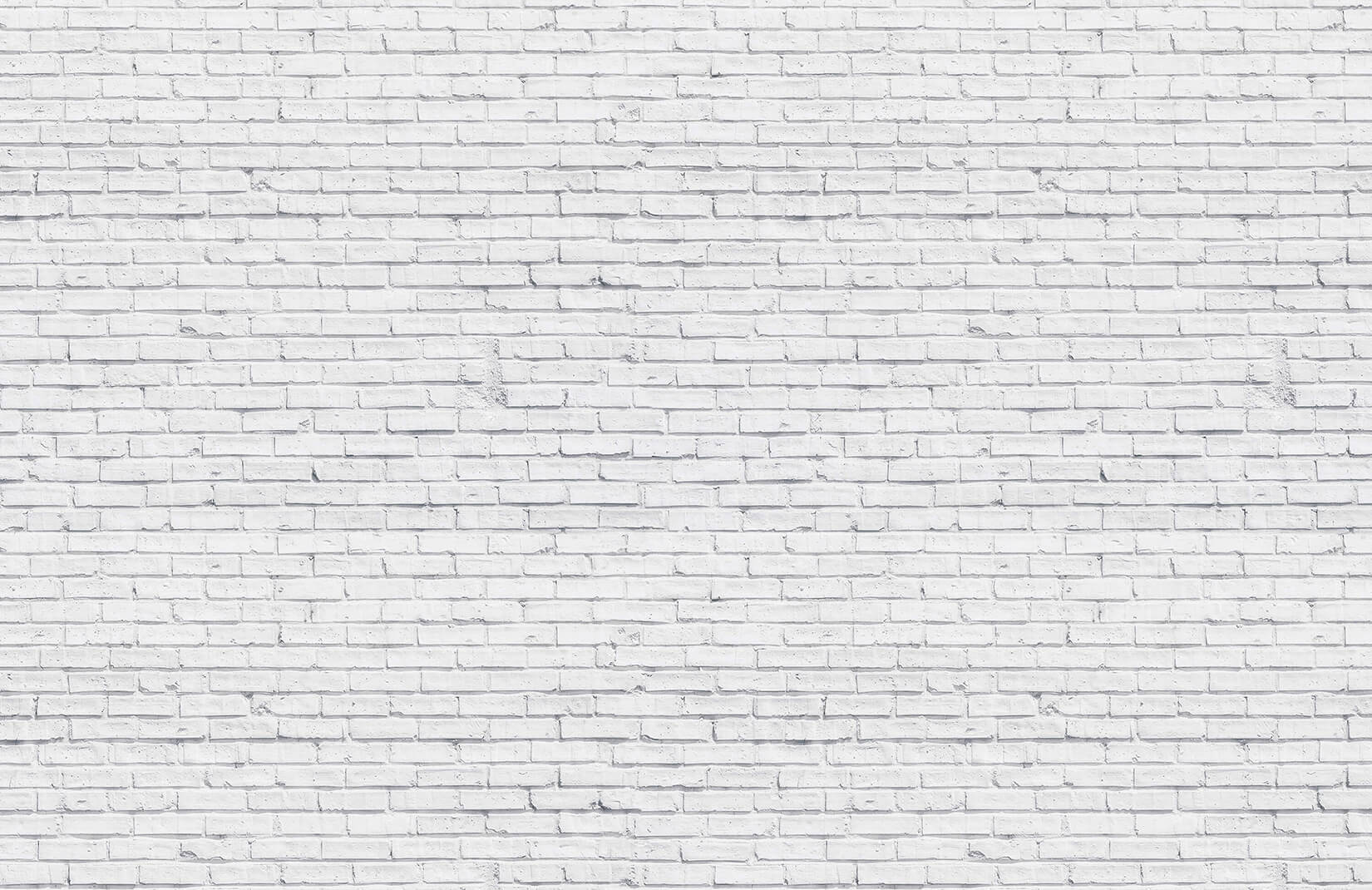 Astounding Clean Brick Wall Textures Plain Brick Wall Decor Brick Wall Living Room houzz 01 White Brick Wall