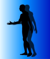 Applied Kinesiology Functional Mechanics