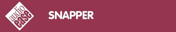 Snapper header