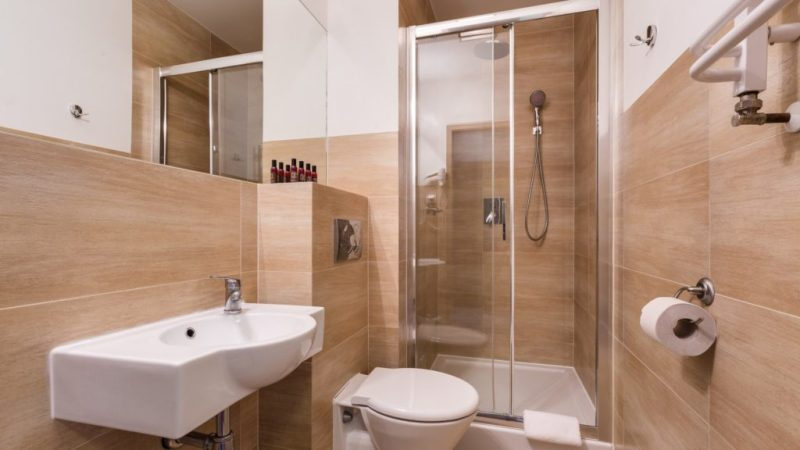 noclegi-w-gorach-hotel-w-gorach-hotel-sasanka