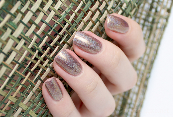 ILNP Fall 2014: Iconic