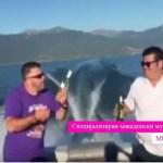 Познатиот Андруш наместо во камион, заедно со Наум Петрески во Охрид на одмор и забава
