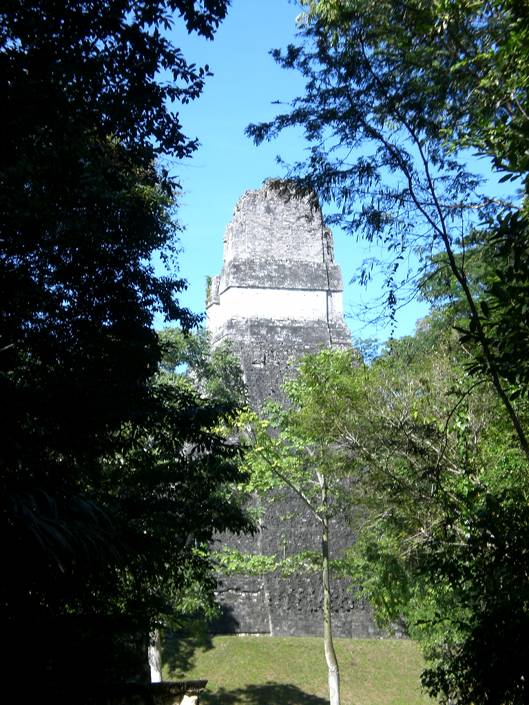One of the pyramids in Tikal ruins