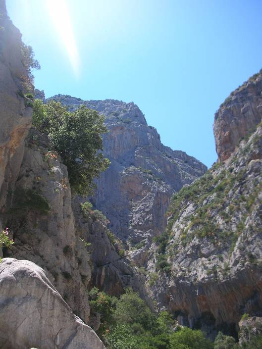Searching for what to do in Sardinia? Hike a Canyon