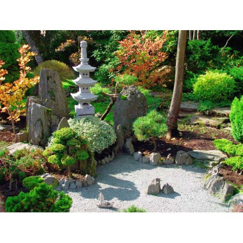 Medium Crop Of Garden Backyard Designs