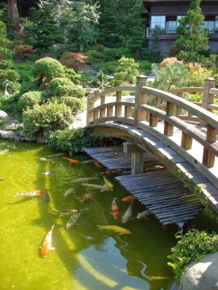 17 beautiful japanese garden bridge designs for Koi fish pond garden design ideas