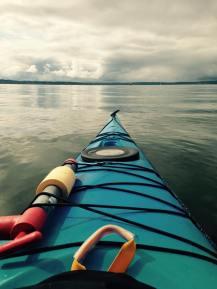 Ballard Kayak_View from Shilshole