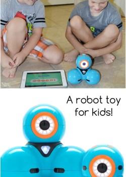 Meet Dash – A Robot Toy for Kids!