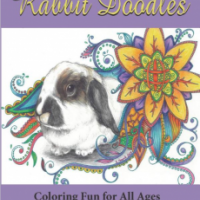 Get Rabbit Doodles on Amazon!