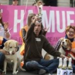 Madrid Becomes No-Kill