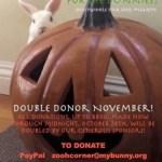 Double Donor November!!