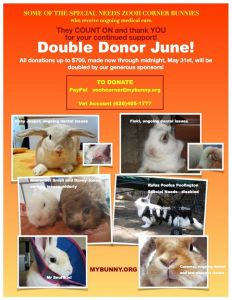 double donor june 2016