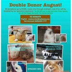 Double Donor August