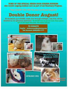 double donor aug 2016