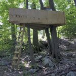 The Naugatuck Zoning Board of Appeals ruled the tree fort in the backyard of the Bronkos' home can stay. –RA ARCHIVE