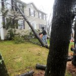 Homeowner Rita Lima, right, looks on as her neighbor Justin Campbell cuts a tree that had fallen on her Woodcrest Circle home in Naugatuck on Monday. –RA ARCHIVE