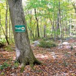 A sign marks a trail in Lantern Ridge Park on Skokorat Road in Beacon Falls. The park, a 97-arce parcel of open space, will be officially opened for passive recreation during a ribbon cutting ceremony at 11 a.m. Oct. 19. –LUKE MARSHALL