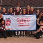 The Union City Little League 9-11 All-Star girls softball team recently won the District III championship and was runner-up in the state tournament. Pictured, kneeling from left, Maya Williams, Stephanie Sutherland; standing, Kaylee Massicotte, coach Steve Litke, Christina Roberts, Sydney Crockette, Julianna Sarbieski, Julia Kropo, coach John Bombery, Riley Best, manager Paul Kelly, Felicia Salvati, Avery Crockette, Alyssa Grzeika and Aryn Bombery. –CONTRIBUTED