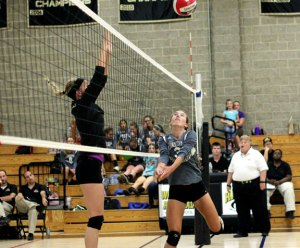 sp_volleyball8