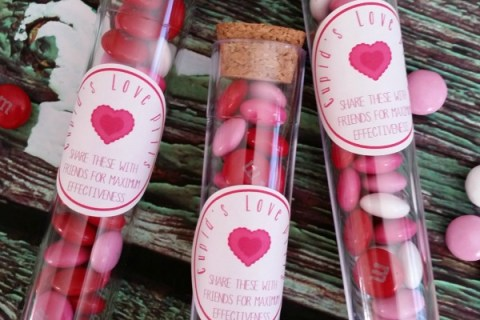 cupids love pills valentines day treat