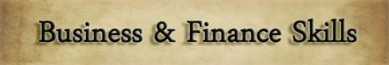 business and finance skills