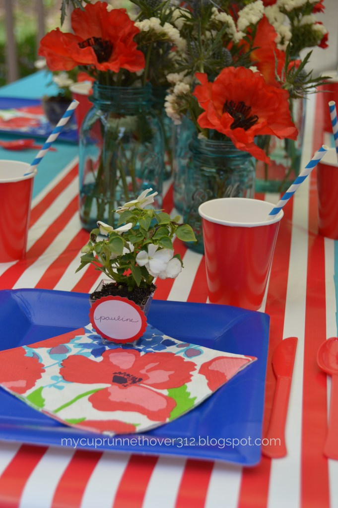 MEMORIAL DAY POPPY PARTY – WITH PARTY CITY