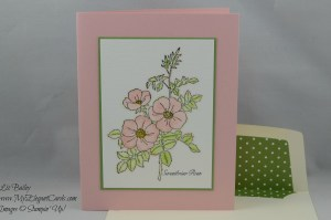 Stampin' Up! Sweetbriar Rose