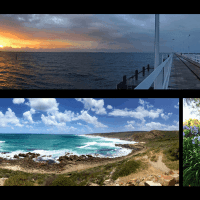 WA Road Trip: Wineries + Beaches = Margaret River