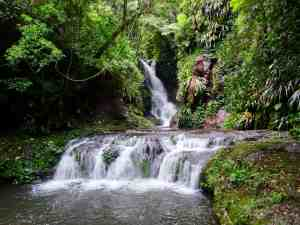 Lamington National Park - Box Forest Circuit - Elabana Falls 01