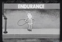 fallout-4-endurance