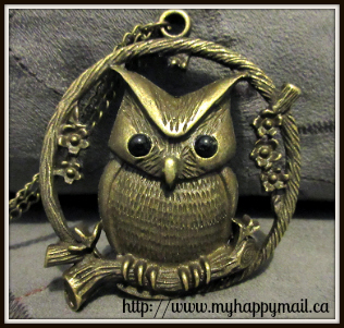 Flitwicks Box Review October 2015 Jewellery Subscription Box Owl Necklace