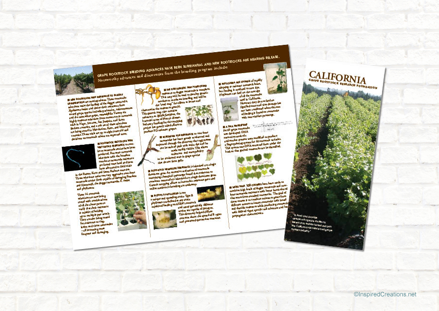CA Grape Rootstock Research Foundation
