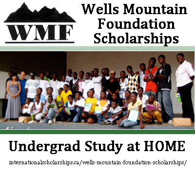 Wells Mountain Foundation Undergrad Scholarships