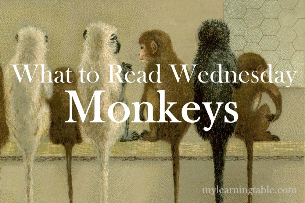 What to Read Link Up: Monkeys mylearningtable.com