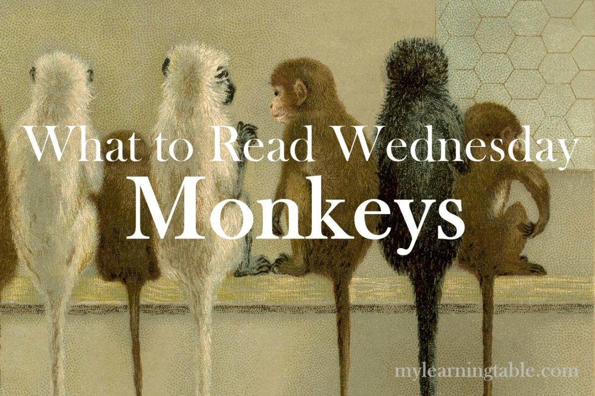 What to Read Link Up: Monkeys