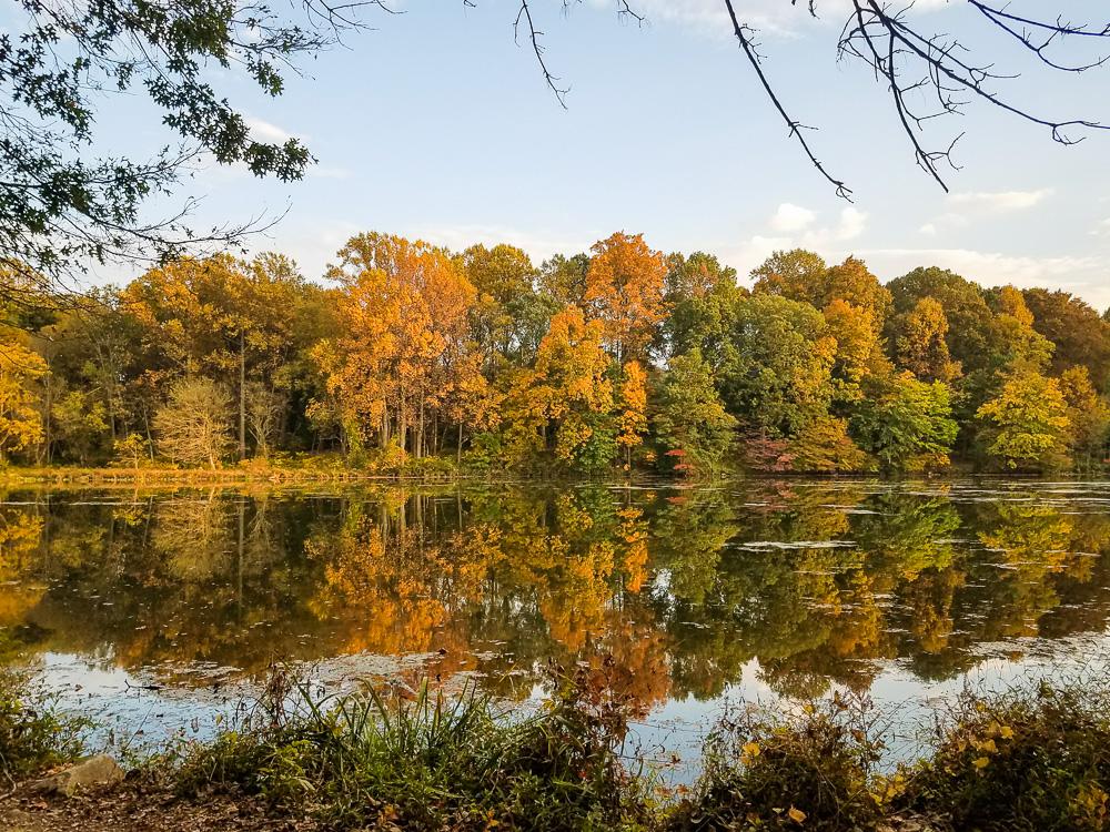 Lake Elkhorn Fall colors