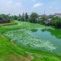 hue city green