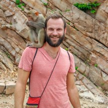 Jaipur-monkey on the shoulder II