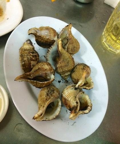 Fire roasted Velvet snails
