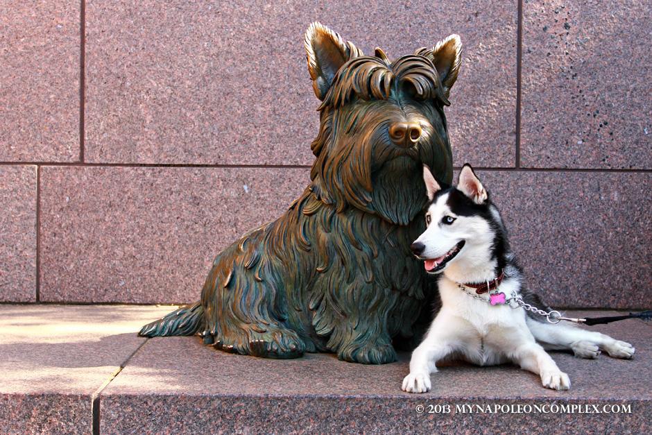 The Jefferson Memorial & the Roosevelt Memorial